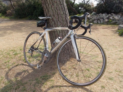 semas bike