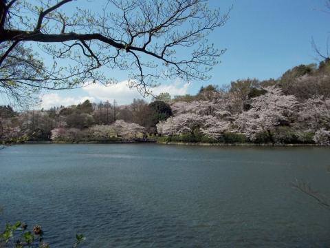 12三ッ池公園