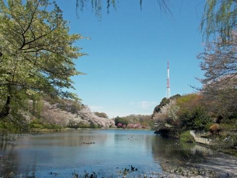09三ッ池公園