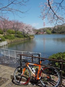 07三ッ池公園