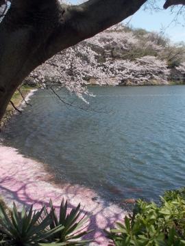 02三ッ池公園