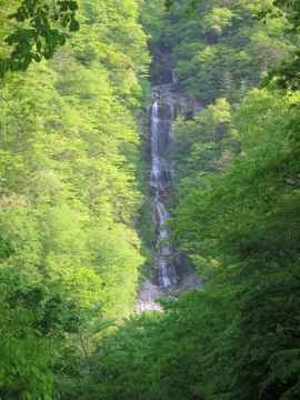 25蛇王の滝