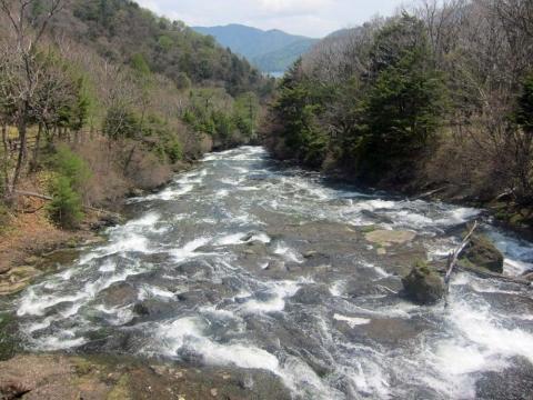 11竜頭の滝上