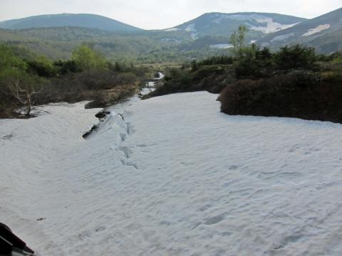61景場平の雪