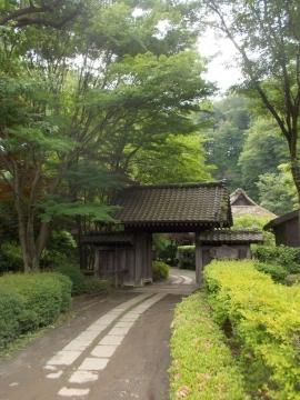 06薬師池公園