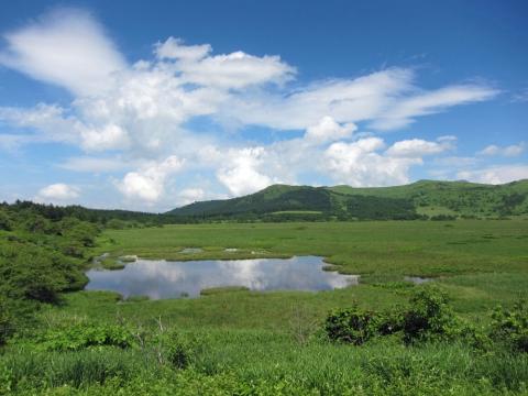 34八島湿原