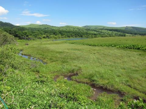 43八島湿原