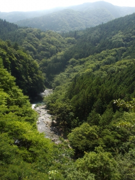 03道志渓谷