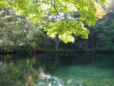 06雲場池