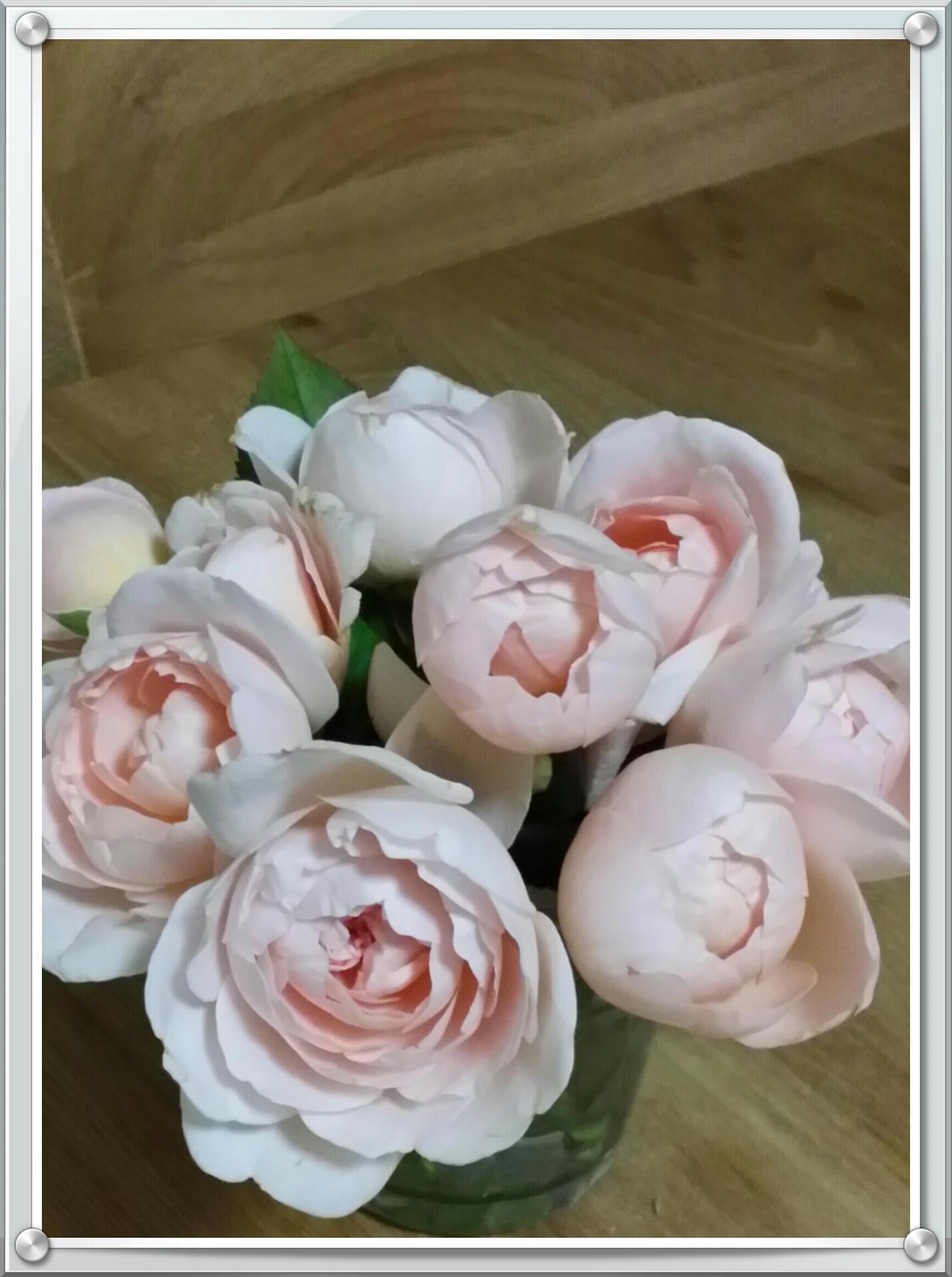 rose14082803.jpg