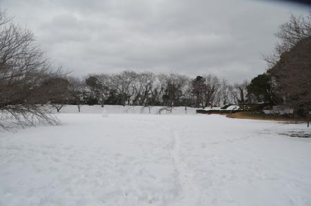20140212佐倉城址公園05