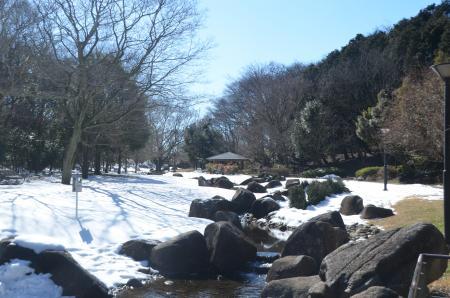 20140216花島公園07