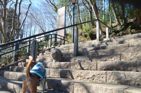 20140216花島公園09