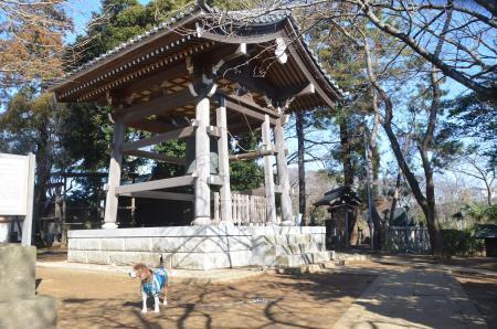 20140216花島公園24