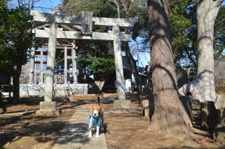 20140216花島公園21