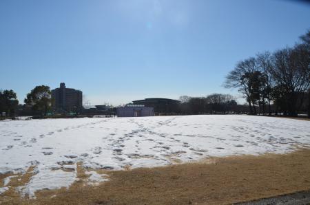 20140216花島公園29