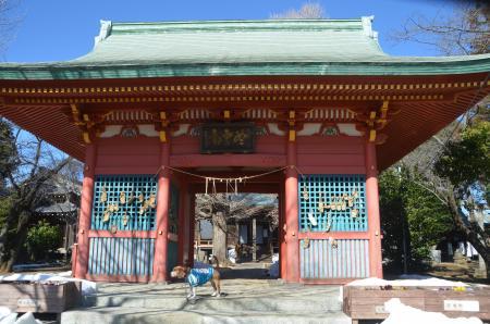 20140216花島公園27