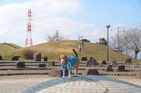 20140222真土大塚山公園01