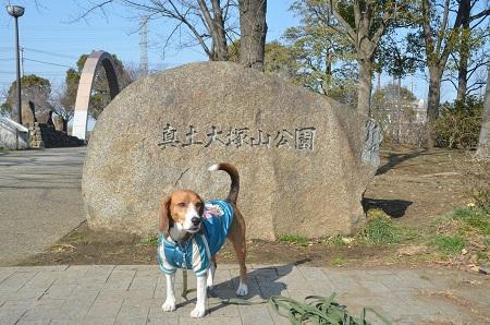 20140222真土大塚山公園13