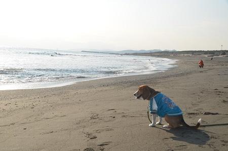 20140222茅ヶ崎西浜06