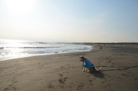 20140222茅ヶ崎西浜05