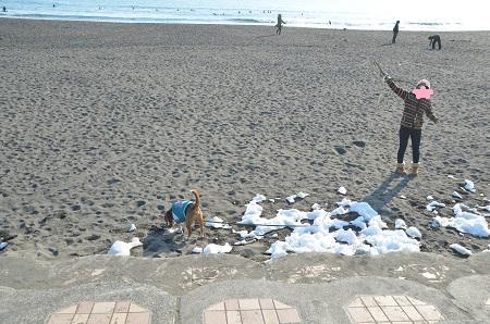20140222茅ヶ崎西浜01