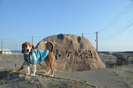 20140222茅ヶ崎西浜19