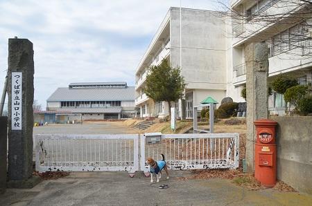 20140309山口小学校03