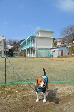 20140309筑波第一小学校15