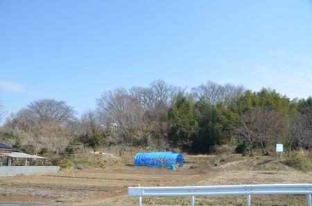 20140309水守城址12