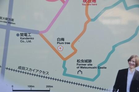 20140315松虫寺03