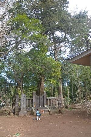 20140315松虫寺10