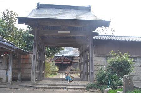 20140315松虫寺20