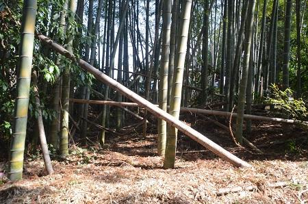 20140316 一鍬田分校14
