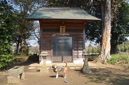 20140316 妙見神社 多古北中03