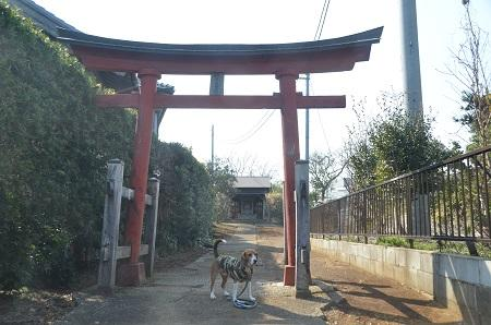 20140316 妙見神社 多古島03