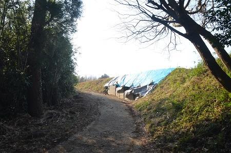 20140316水戸城址16