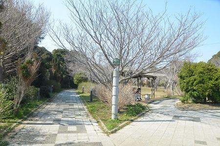 20140325高神小学校06