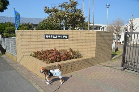 20140325高神小学校12