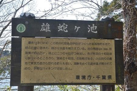 20140401雄蛇ヶ池04