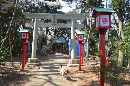 20140401天王台公園14