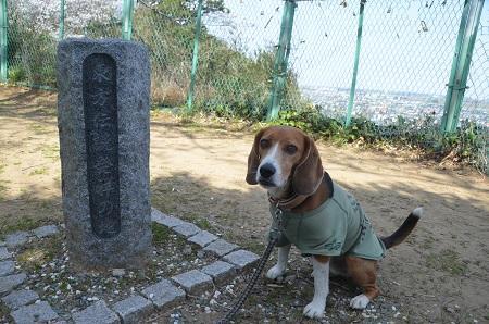 20140401天王台公園22