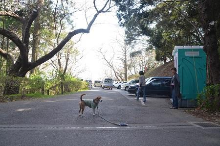 20140401天王台公園26