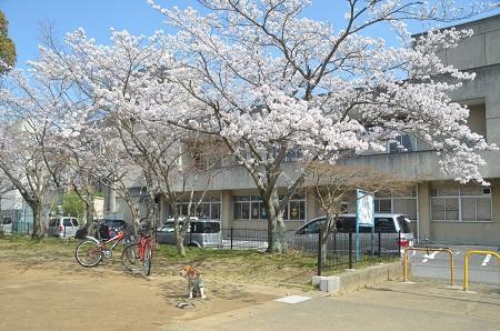 20140401東金小学校跡12
