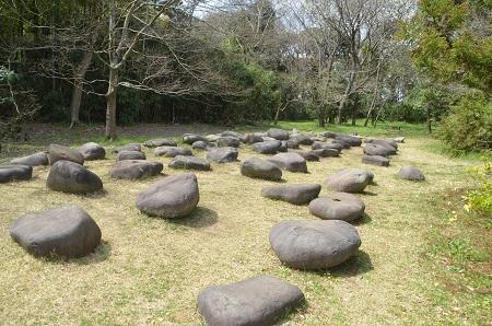 20140402佐倉城址公園22