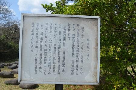 20140402佐倉城址公園21