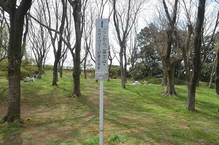 20140402佐倉城址公園42