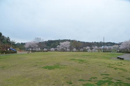 20140406公津公園02