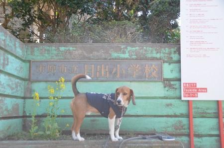 20140407月出小学校03