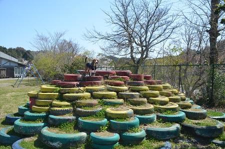 20140407老川小学校04